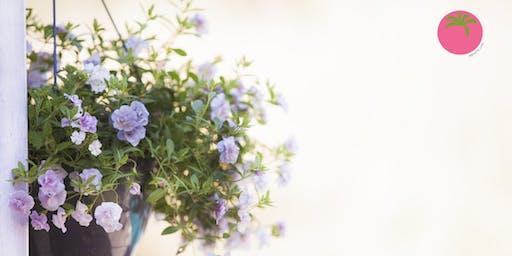 Jardines Colgantes: Cómo seleccionar y combinar plantas en canastas