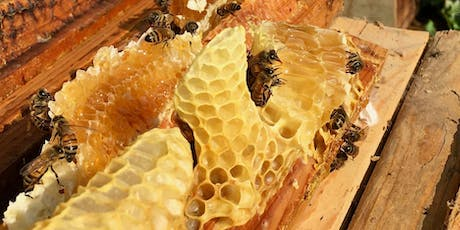 Natural and Traditional Beekeeping  tickets