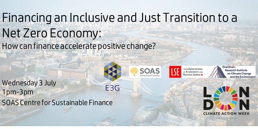 Financing an Inclusive and Just Transition to a Net Zero Economy