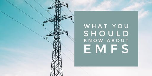 EMF Exposure: What you should know about your wifi