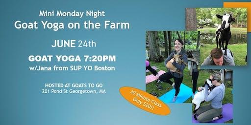 Mini-Monday Goat Yoga, on the Farm