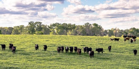 Louisiana Cooking Class -- Meats: Grazing Pastures of Southeast Louisiana tickets