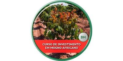 Curso de Investimento em Mogno Africano - BH