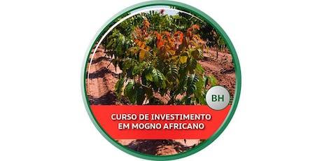 Curso de Investimento em Mogno Africano - BH ingressos