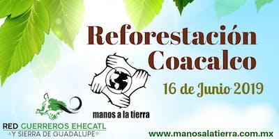 REFORESTACIÓN COACALCO 16/06/19