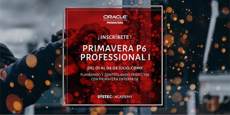 Primavera P6 Enterprise Project Portfolio Management entradas
