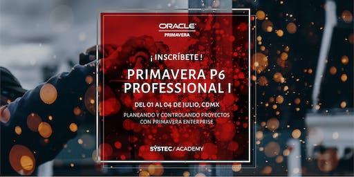 Primavera P6 Enterprise Project Portfolio Management