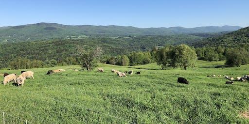 Knoll Farm Tour