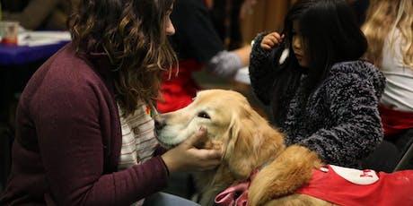 Doggo Dreamland | Volunteer with the MAH tickets
