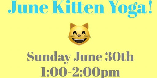 June 2019 Kitten Yoga