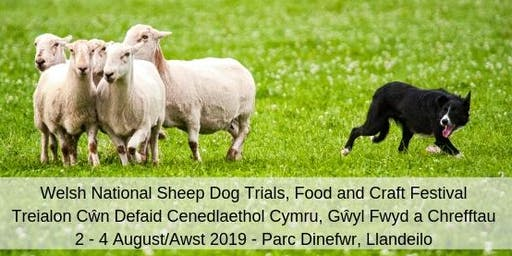 2019 Welsh National Sheep Dog Trials, Food and Craft Festival - Llandeilo