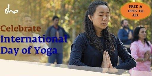 International Day of Yoga - Free Meditation for Beginners