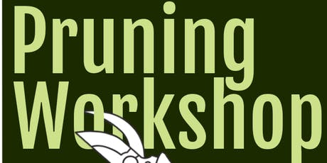 Pruning Workshop tickets