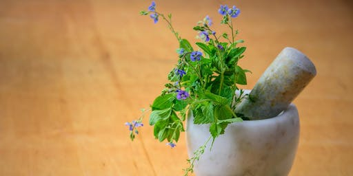 Kids in the Kitchen: An Herbal Summer Vacation