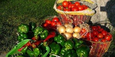 Canning Everything Tomato