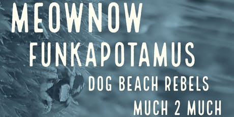 Much 2 Much, Dog Beach Rebels, Funkapotamus, and MeowNow at Swan Dive tickets