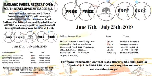 Oakland Parks, Recreation and Youth Development Baseball (Allendale Field)