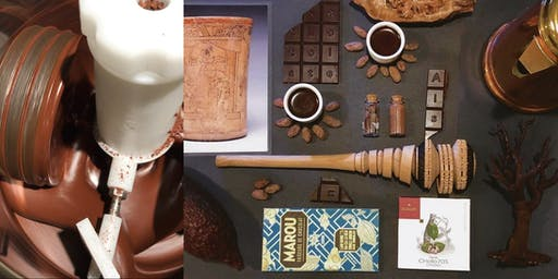 The Origin Of Chocolate Species; Chocolate Tasting & Making Workshop