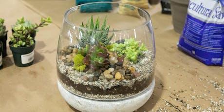 DIY Terrarium Workshop | Folsom $45 tickets