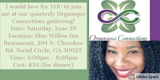 Organique Connections Quarterly Gathering - June 2019