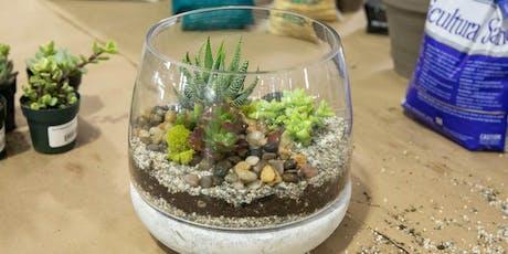 DIY Terrarium Workshop | Elk Grove $45 tickets