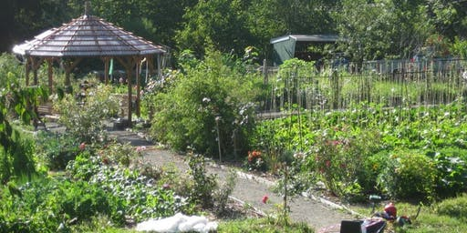 3rd Annual Social Permaculture Pizza Party at Songaia