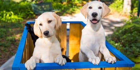 Training Guide Dogs for the Blind tickets