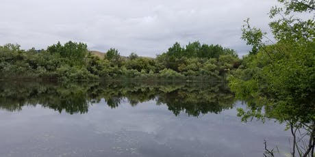 Tule Ponds at Tyson Lagoon - Free General Tour tickets