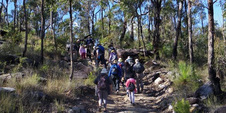 Wildflowers Walk - Plunkett Conservation Park tickets