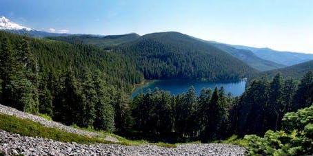Twin Lakes Logout & Maintenance (June 22)