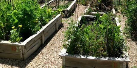 Trott Park | Raised Garden Bed Workshop | Light Lunches tickets