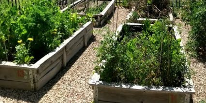 Trott Park | Raised Garden Bed Workshop | Light Lunches