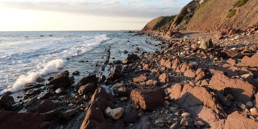 Trott Park  Hallet Cove and the Ice Ages   Light Lunches