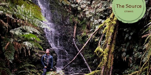 Forest Bathing in Ancient Otways Rainforest with Waterfalls
