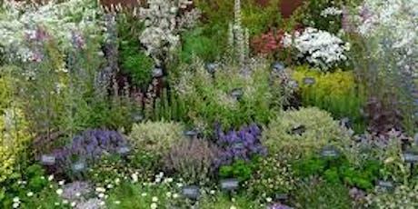 Creating a Medicinal Herb Garden tickets