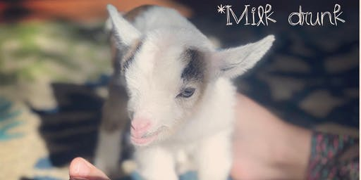 Feels Like OM Baby Goat Yoga