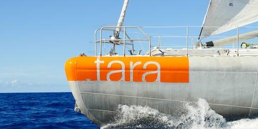 Visit on board Tara in Flensburg on 6th July