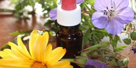 An Ounce of Prevention? Using Homeopathy to Boost Immunity and Prevent Illness tickets