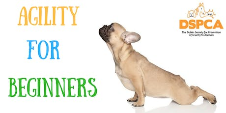 AGILITY FOR BEGINNERS, Saturday, DSPCA tickets