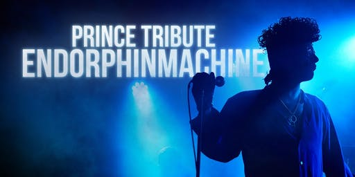 ENDORPHINMACHINE Prince Tribute
