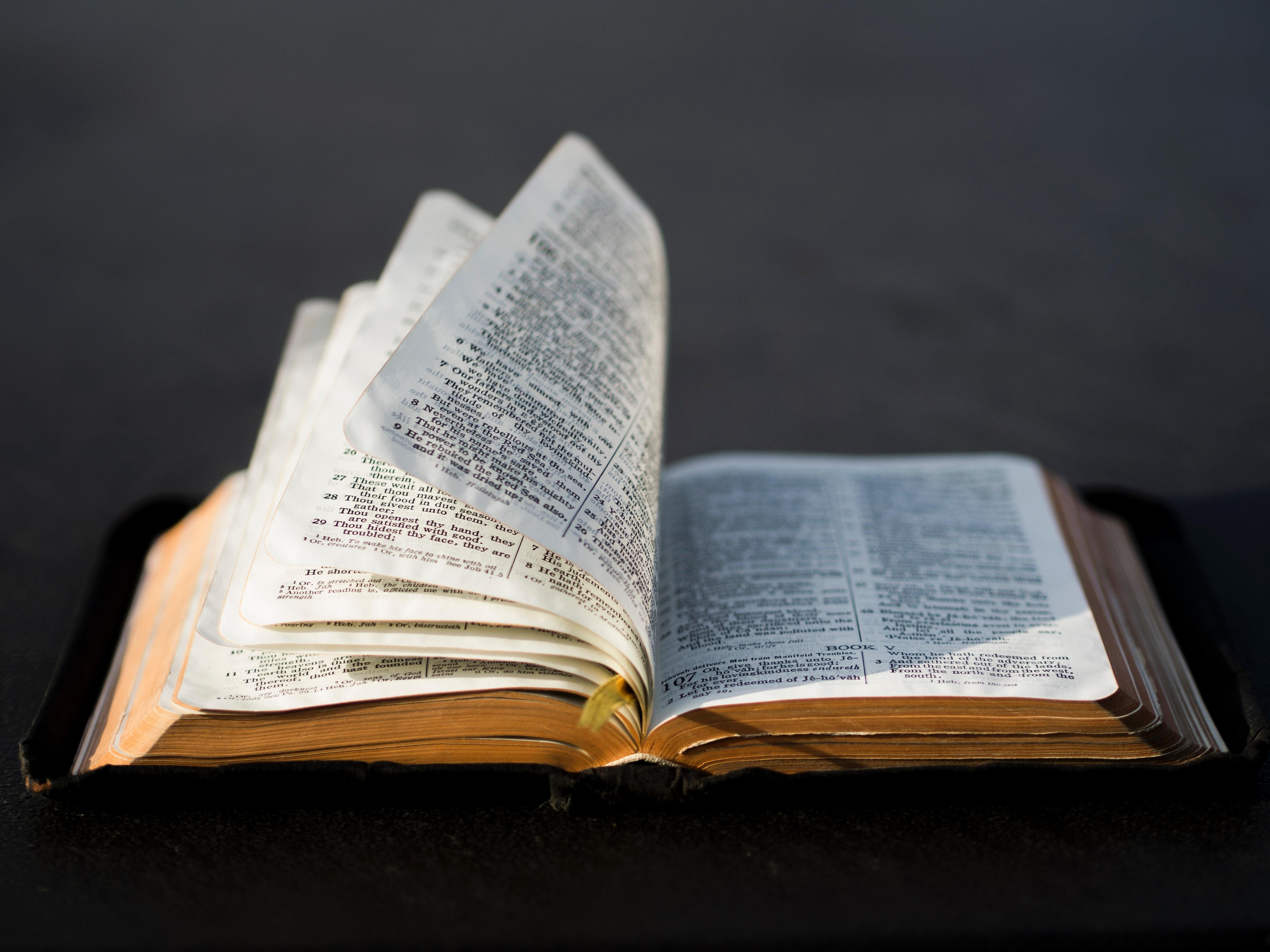 Bible in a Day - Bradford