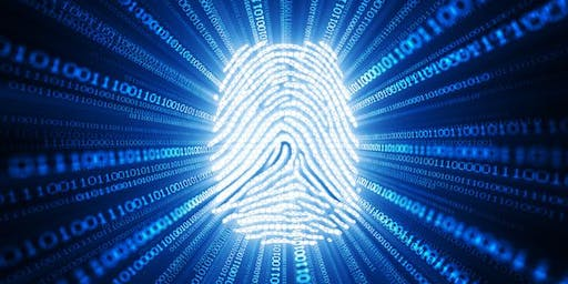 Cybercrime and financial fraud: the new reality