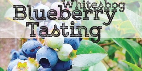 Blueberry Tasting at the Farm tickets