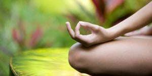 Intro to Mind Body Energy Practices Series