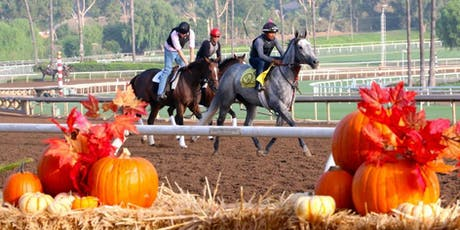 4th Annual Pumpkins & Ponies Family Fall Festival  tickets