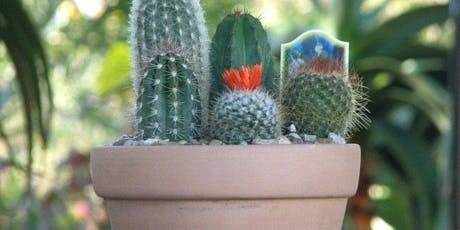 Crazy for Cactus - Build Your Own Cactus Dish Garden tickets