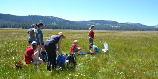 Lacey Meadows Headwater Science Institute Special Hike