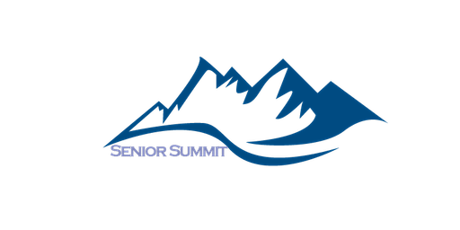 Senior Summit's Professional Day 2020