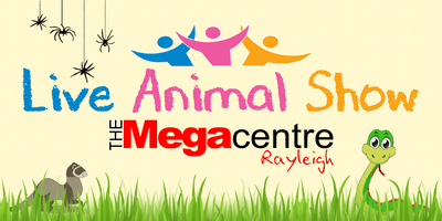Live animal show in Megaplay