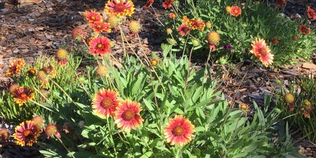 Landscaping with Native Plants tickets
